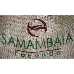 Br&eacute;sil Fazenda Samambaia