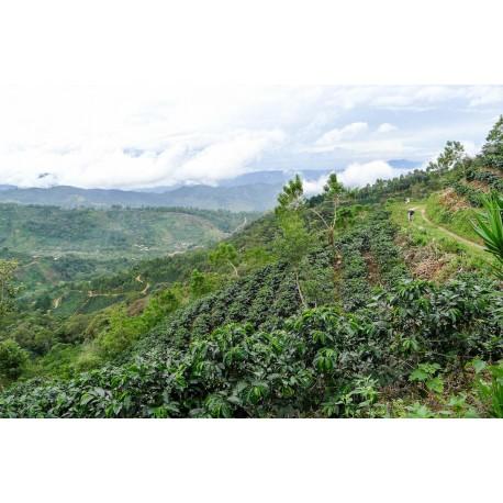 Costa Rica Hacienda San Ignacio
