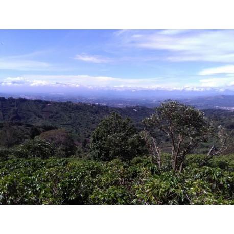 Costa Rica Finca El Mirador