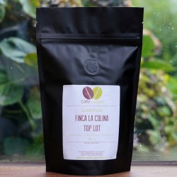 Guatemala Finca La Colina Top Lot
