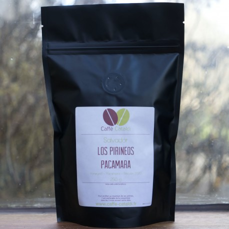 Salvador Los Pirineos Pacamara Black Honeyed