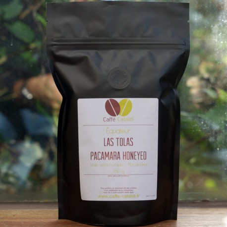 Equateur Las Tolas Pacamara Honeyed